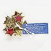 "Charm, enamel and antiqued gold-finished ""pewter"" (zinc-based alloy), red, 17x16mm star. Sold per pkg of 8."